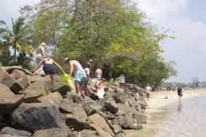 Community beach clean