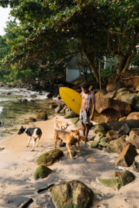 dogs-surfer-mirissa